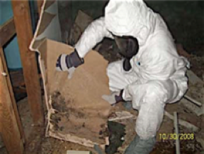 Provide the best asbestos to the customer