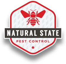 Advice your clients with the best idea of destroying the pest